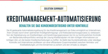 Solution Summary: Kreditmanagement-Automatisierung